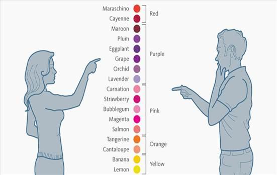 تشخیص+رنگ.jpg -
