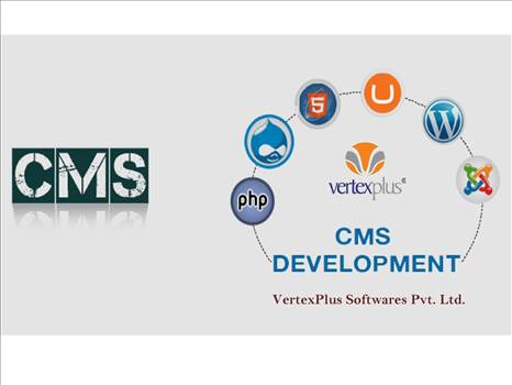 Hire CMS Development Services with expert CMS developers  by vertexplus