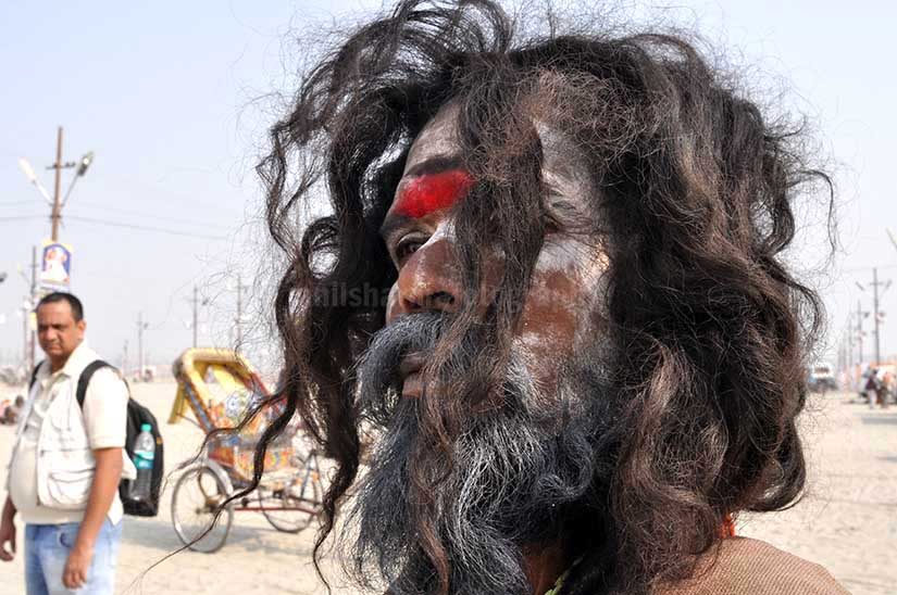 Culture- Aghori Sadhu's (India) Close-up of a Aghori Sadhu with long hairs, wearing rudraksha bead at Mahakumbh, Allahabad, Uttar Pradesh, India. by Anil Sharma Photography