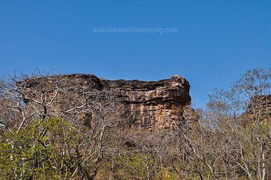 Archaeology- Bhimbetka Rock Shelters - Bhimbetka Rock Shelters at Bhimbetka forest in Ratapani Sanctuary, Raisen.