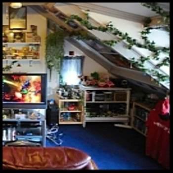 McHalen Room2.jpg -