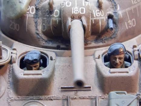 P1020006.JPG by Bullbasket