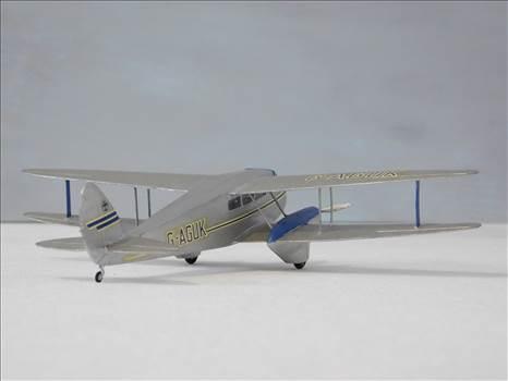 SpitfireRapideBuffalo 025.JPG by adey m