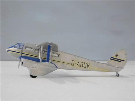 SpitfireRapideBuffalo 022.JPG by adey m