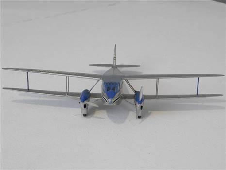 SpitfireRapideBuffalo 027.JPG by adey m