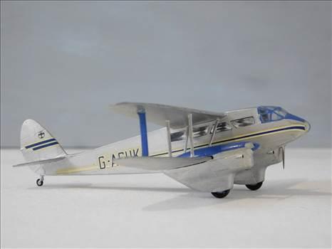 SpitfireRapideBuffalo 024.JPG by adey m