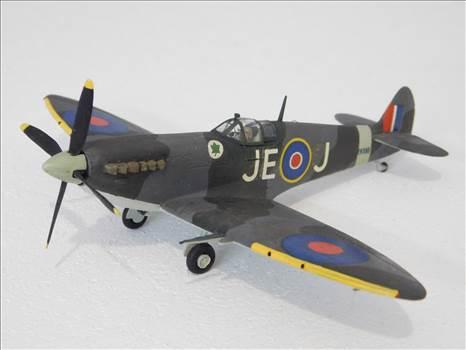 SpitfireRapideBuffalo 006.JPG by adey m