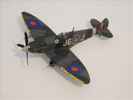 SpitfireRapideBuffalo 001.JPG by adey m
