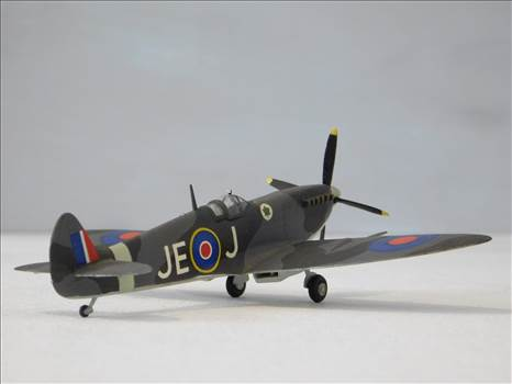 SpitfireRapideBuffalo 011.JPG by adey m