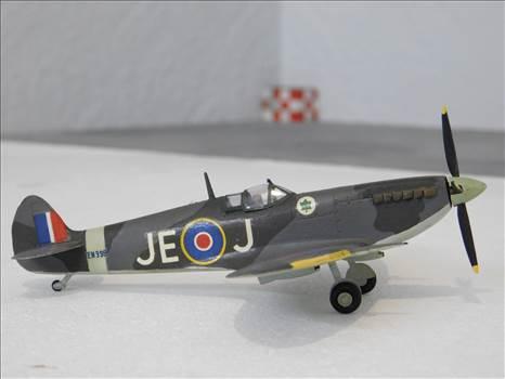 SpitfireRapideBuffalo 004.JPG by adey m