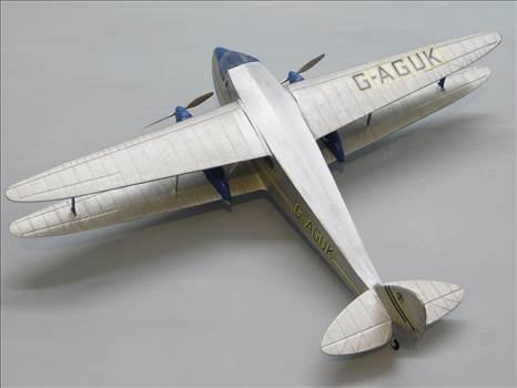 SpitfireRapideBuffalo 017.JPG by adey m
