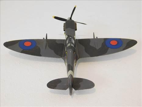 SpitfireRapideBuffalo 003.JPG by adey m