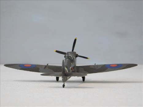 SpitfireRapideBuffalo 012.JPG by adey m