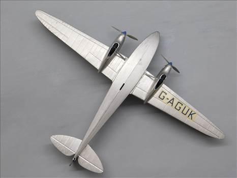 SpitfireRapideBuffalo 021.JPG by adey m