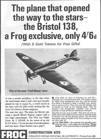 frog-bristol-138.jpg by adey m