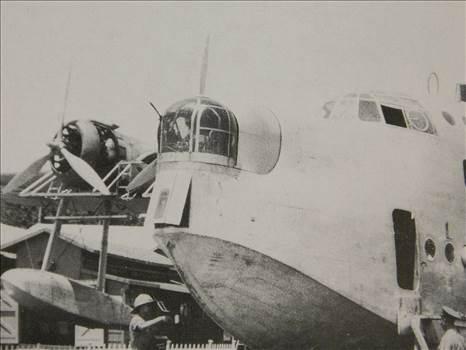 Sunderlanddetail 008.JPG by adey m
