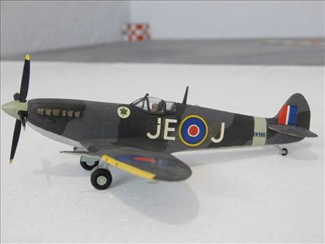 SpitfireRapideBuffalo 008.JPG by adey m