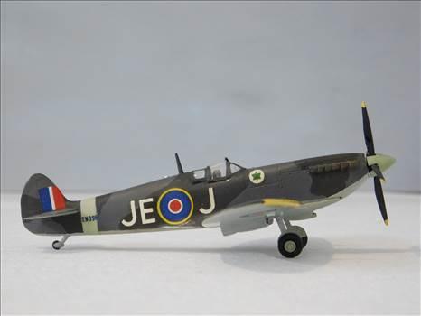SpitfireRapideBuffalo 010.JPG by adey m
