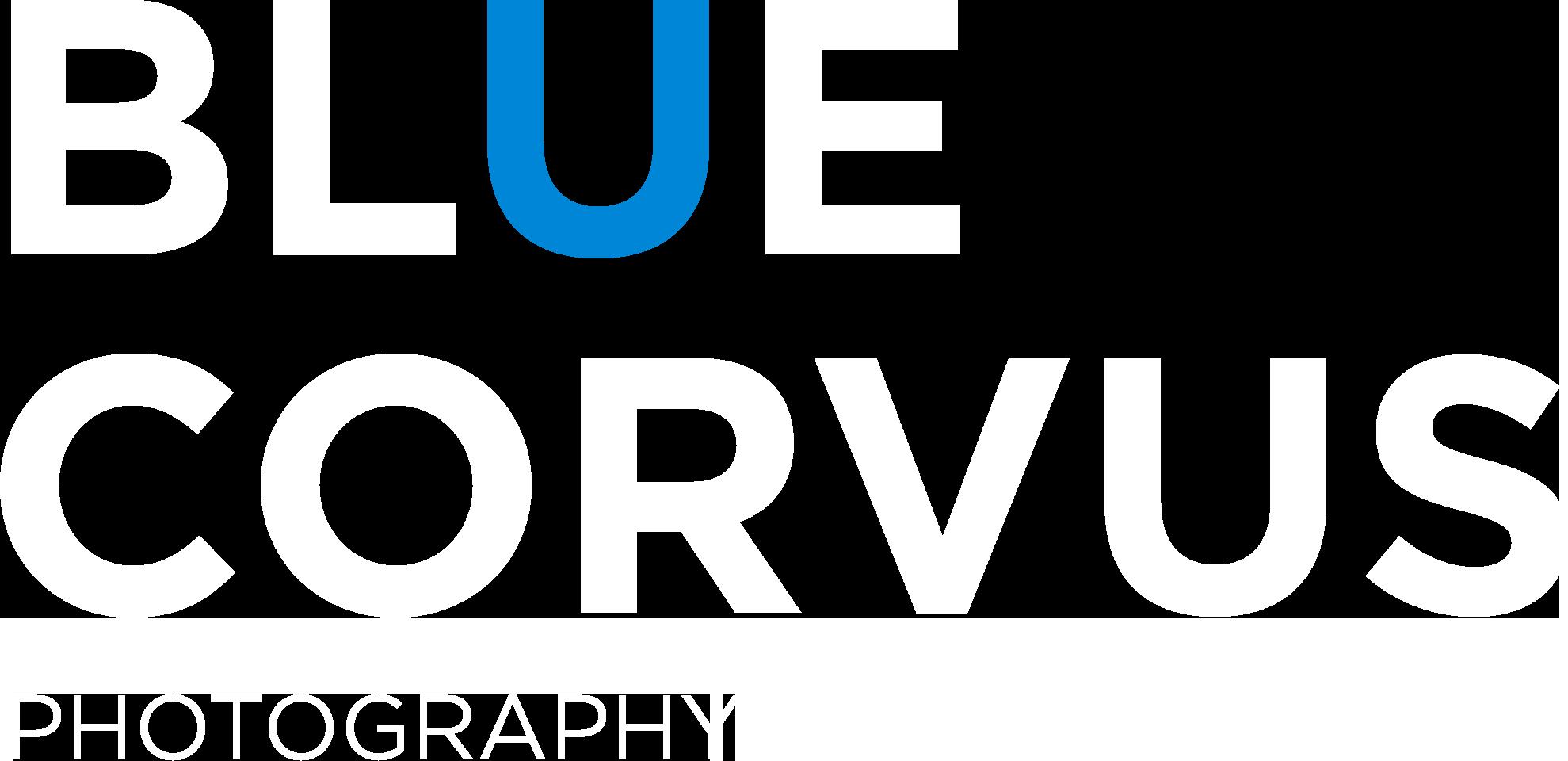 Blue Corvus Photography