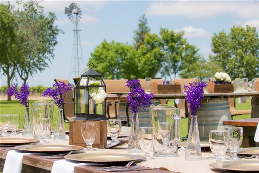 Murane Wedding April 2016 #4 - Location: Engelmann Cellars-