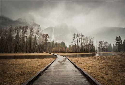 """""""A Path Into the Mist"""" by Eddie Caldera Zamora"""