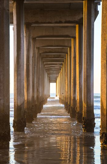 """Pilings of Scripps Pier"" by Eddie Zamora"