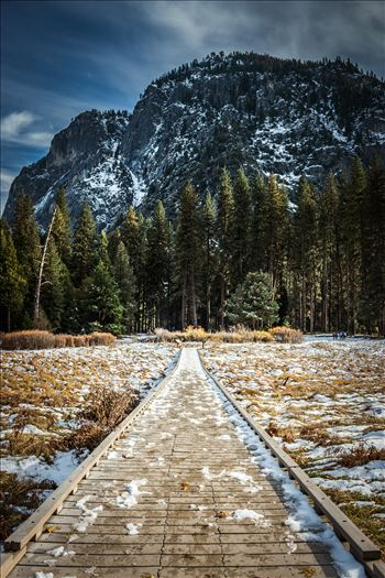"""Yosemite Meadow"" by Eddie Caldera Zamora"
