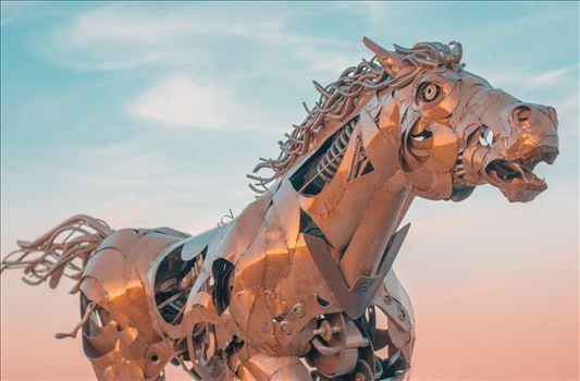 """Metal in Motion"" by Eddie Zamora"