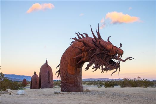 Where Creatures Roam-Borrego Springs by Eddie Zamora