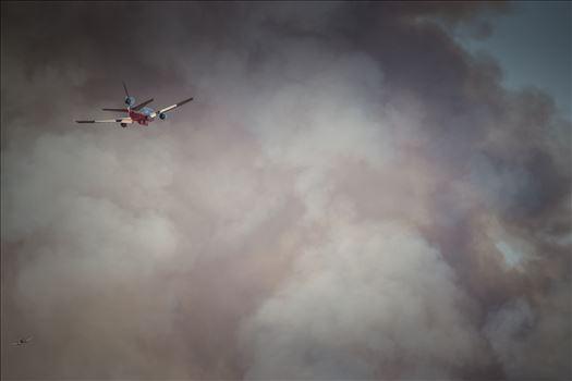 """Into The Smoke"" by Eddie Caldera Zamora"