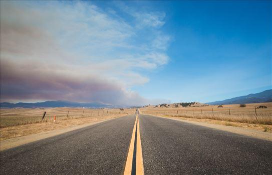 """The Road To Rey"" by Eddie Zamora"