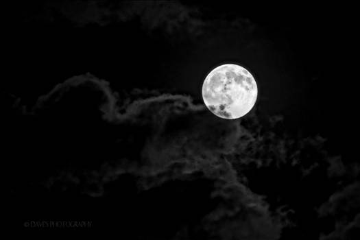 The Moon by David Verschueren