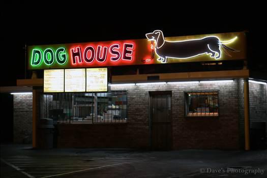 The Dog House by David Verschueren