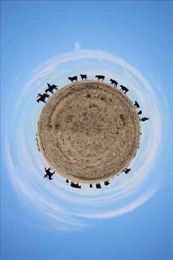 The Trail Ahead (As a Planet!) by David Verschueren