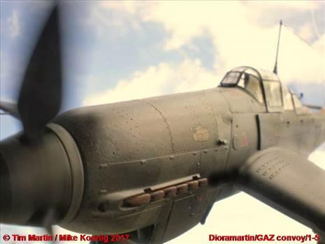1-5 F-MK.JPG -