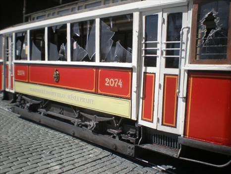 T448 - P8250013.JPG -