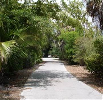 Vacant Land for Sale in Cape Coral Florida by MikeBadenoch