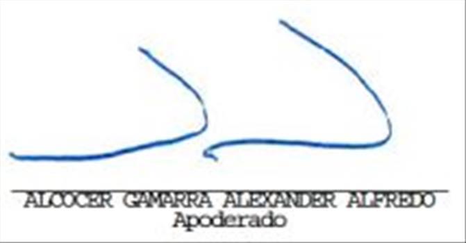 1100 - Consorcio Manperan - Firma digital Boleta.jpg by Raul1994
